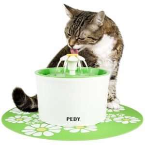 Drinking Water Fountains for Cat
