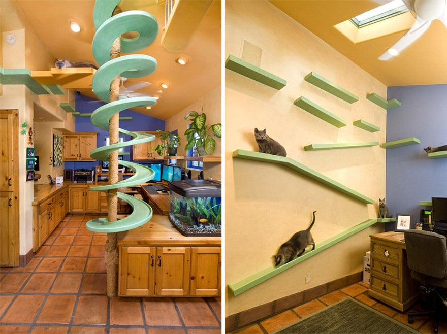 How to Decorate Your Apartment For Your Cat's Enjoyment