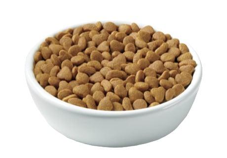 Purina Pro Plan Focus Urinary Tract Health Dry Cat Food Photo