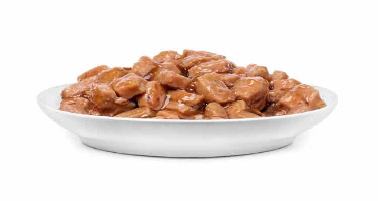 Best Limited Ingredient Wet Cat Food