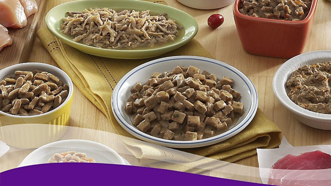 Cat Food Reviews >> Unbiased Wellness Cat Food Reviews Recall History