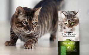Purina Pro Plan Cat Food Reviews