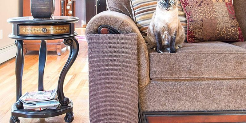 How to Protect Furniture from Cats