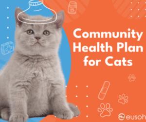 cheap pet health insurance